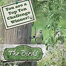 Challenge Banner for The Birds by Donna Keevers Driver