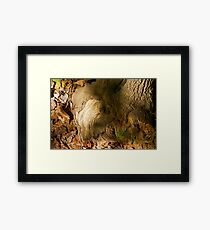A Patch of Fall Framed Print
