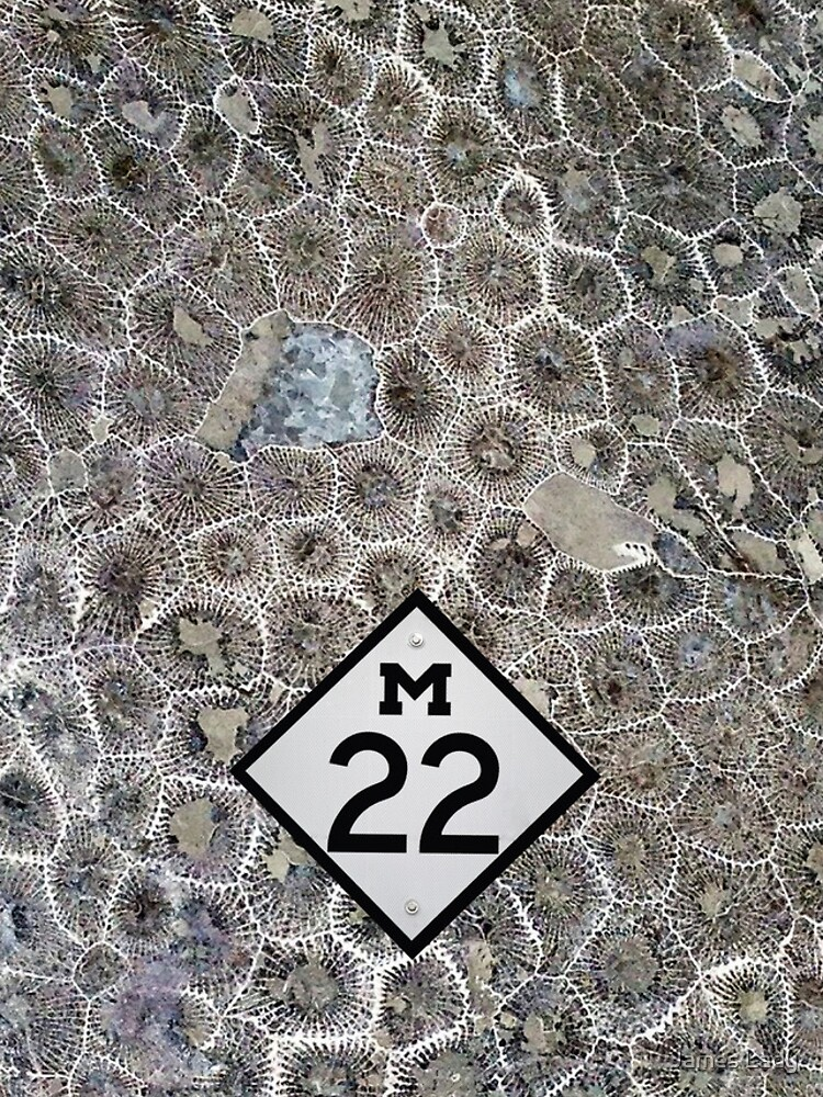 Petoskey Stone, M22, Pure Michigan de jlady