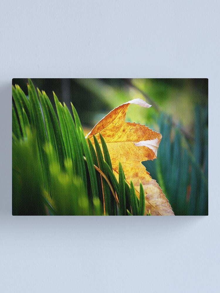 Alternate view of Leaves of Grass Canvas Print