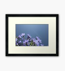 Blue Skies Framed Print