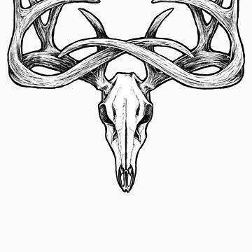 Deer Skull by Smachajewski