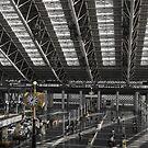 Osaka Station by Colin  Ewington