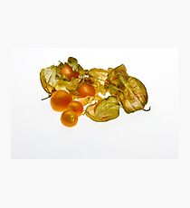 Gooseberries Photographic Print