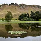 Te Mata Peak - colour by Lisa Wilson