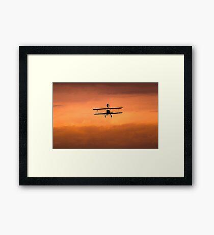 Free Flight Framed Print