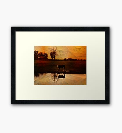 Evening Cloak Framed Print