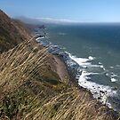 Pacific Ocean by teresalynwillis