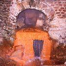 The orange Holly water- Aqua sulis by Arvind Singh