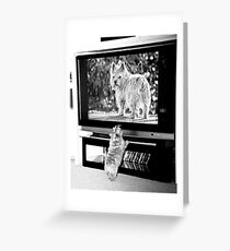 TV Time in Black and White Greeting Card