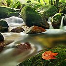 201210260939 Water Flow by Steven  Siow