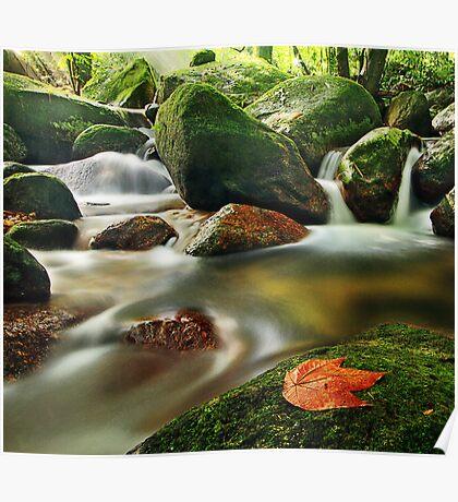 201210260939 Water Flow Poster