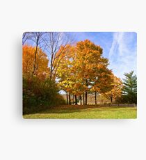 Tinkering with Autumn Canvas Print