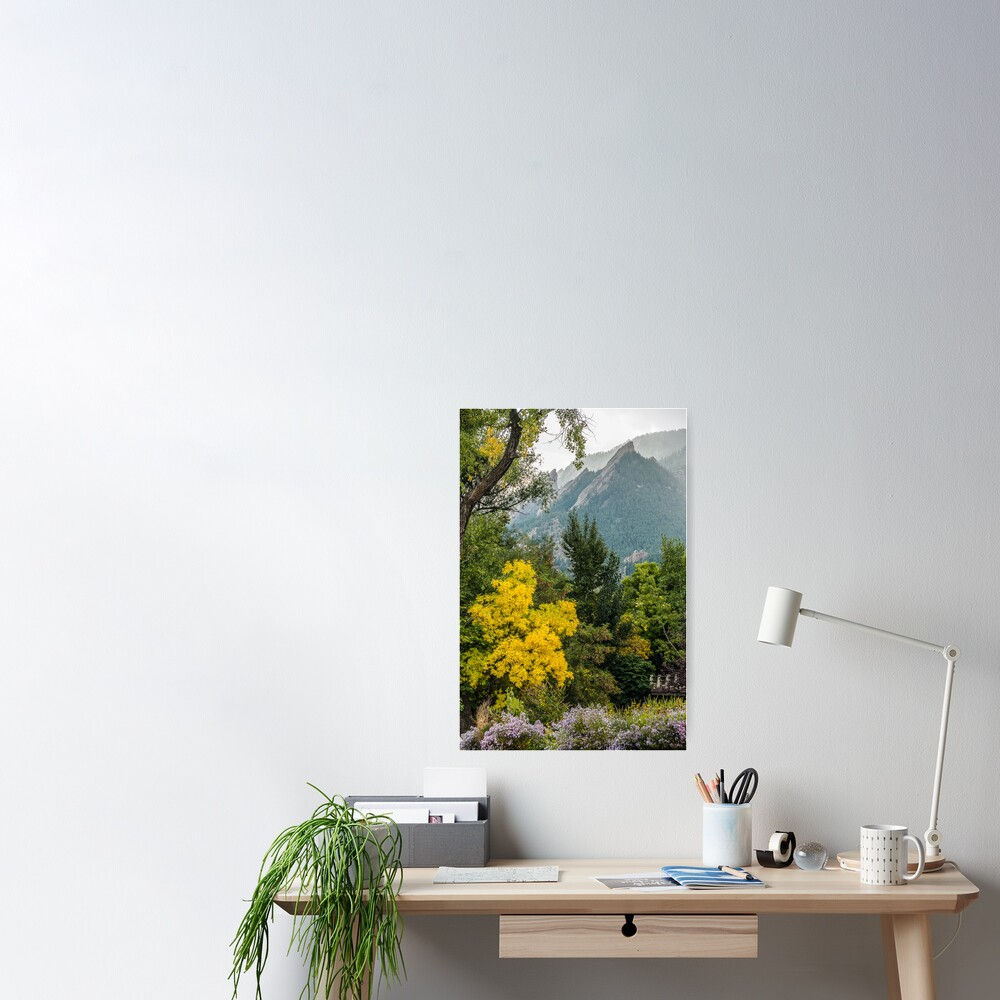 Falling In Love With Fall Poster