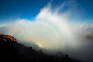 Mountain Spectre, Maui by Michael Treloar