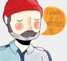 I Wonder If It Remembers Me by nanlawson