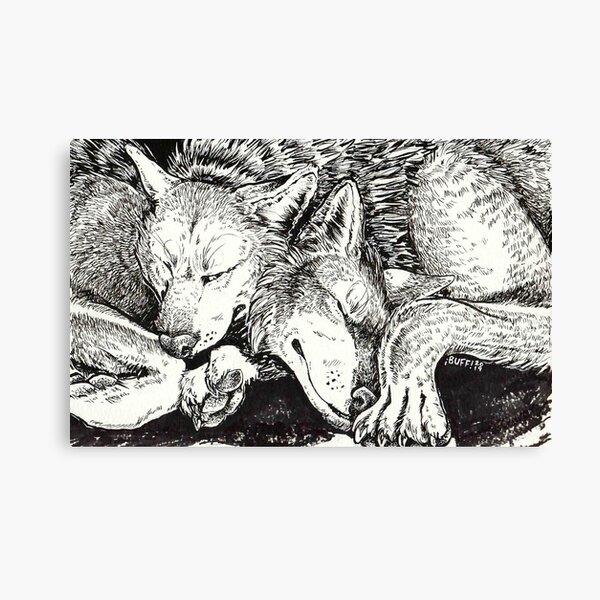 wolf snuggle Canvas Print