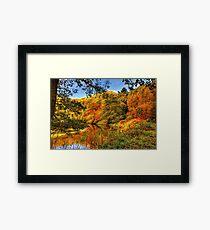 Peaceful Autumn Framed Print