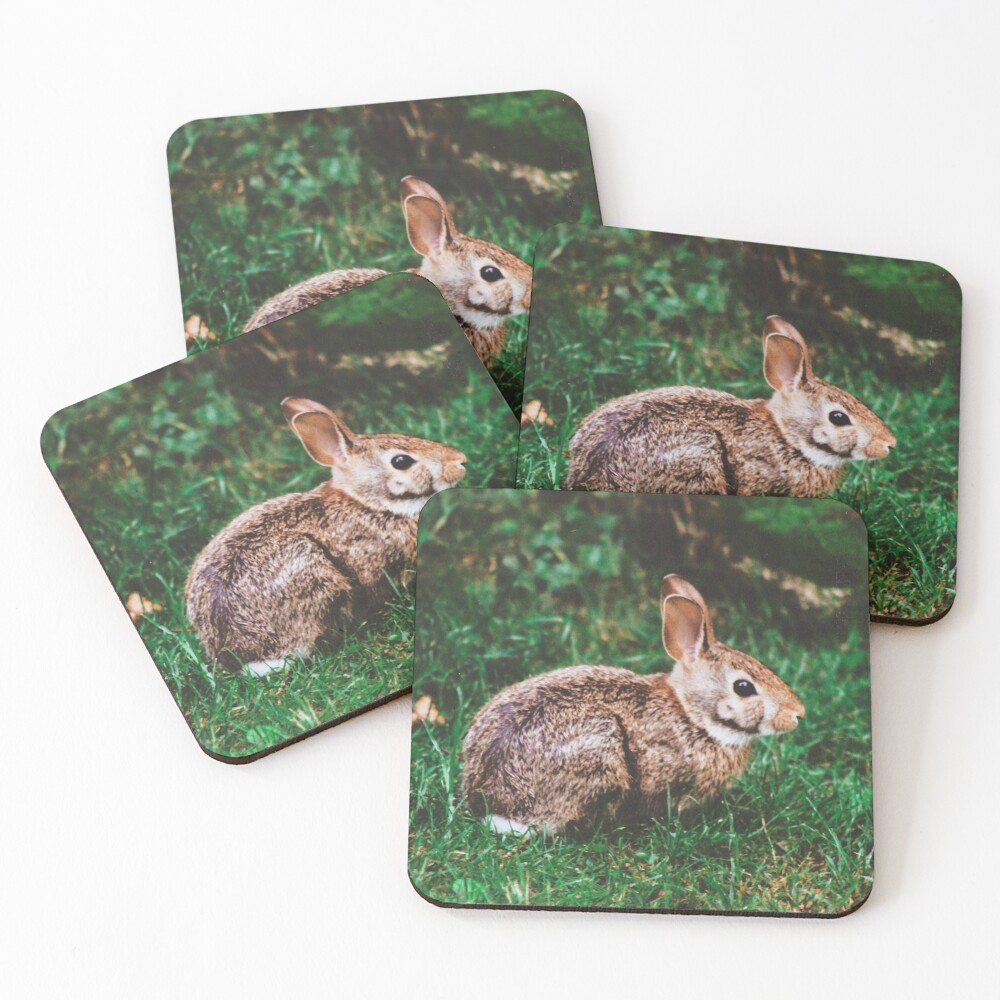 Backyard Bunny Coasters (Set of 4)