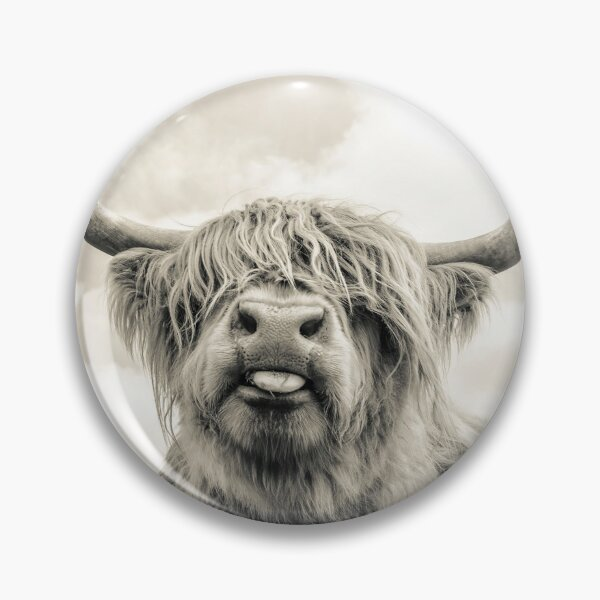 Cheeky Highland Cow  Pin