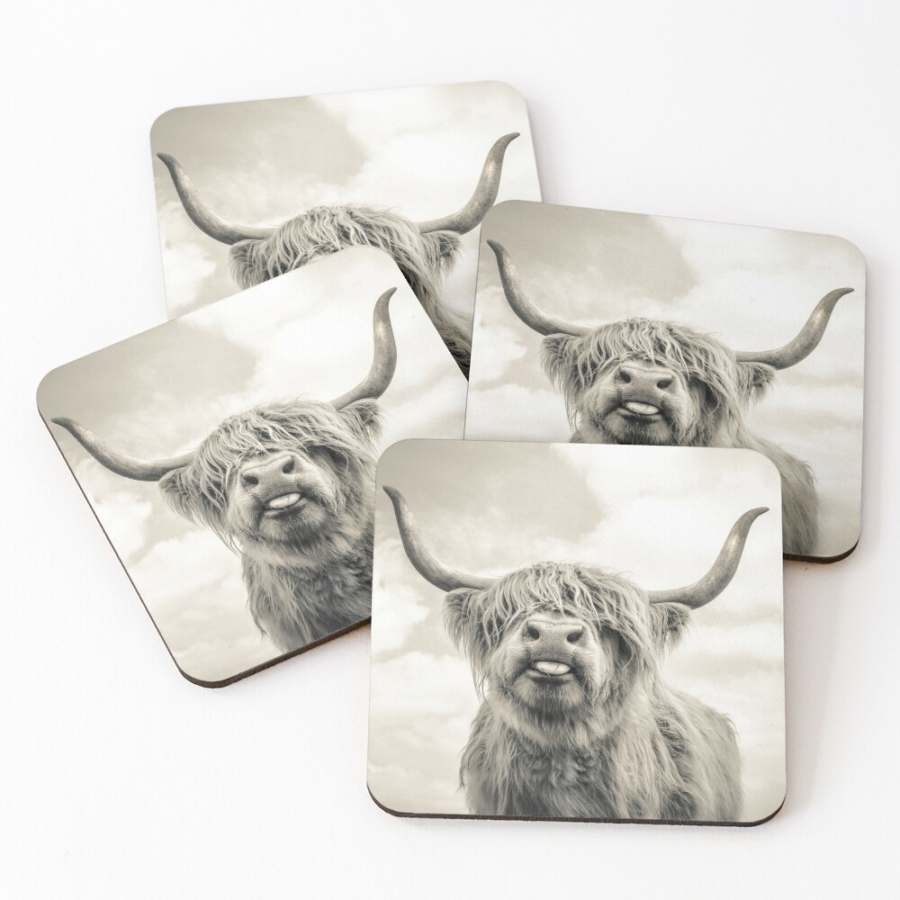 Cheeky Highland Cow  Coasters (Set of 4)