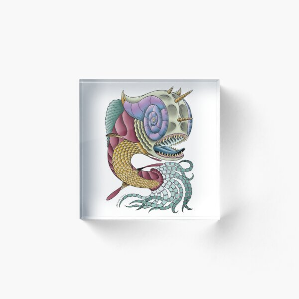 Armour Headed Dragon Fish Acrylic Block