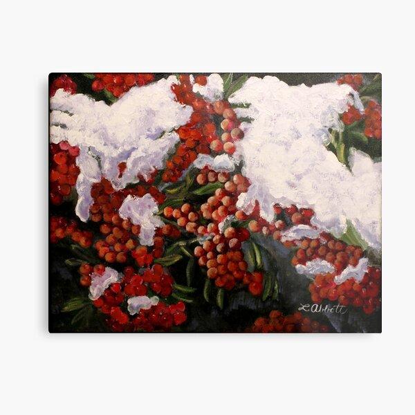 """""""Resilience""""-- Winter Berries in Snow Metal Print"""