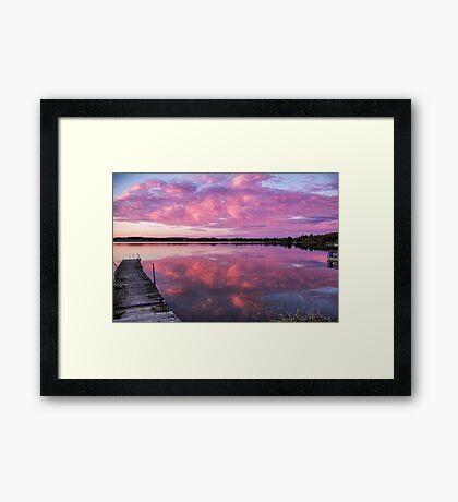 Burst of pink Framed Print