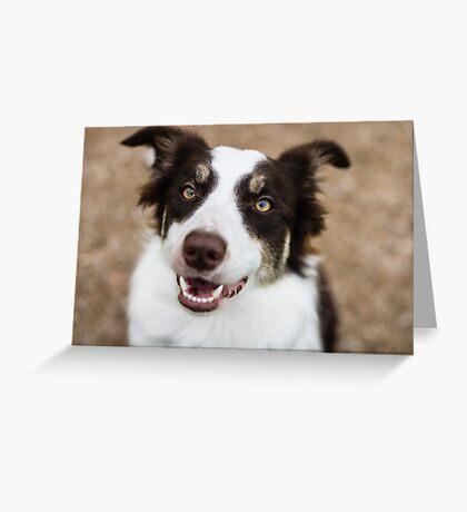Ton-sûr-ton Greeting Card