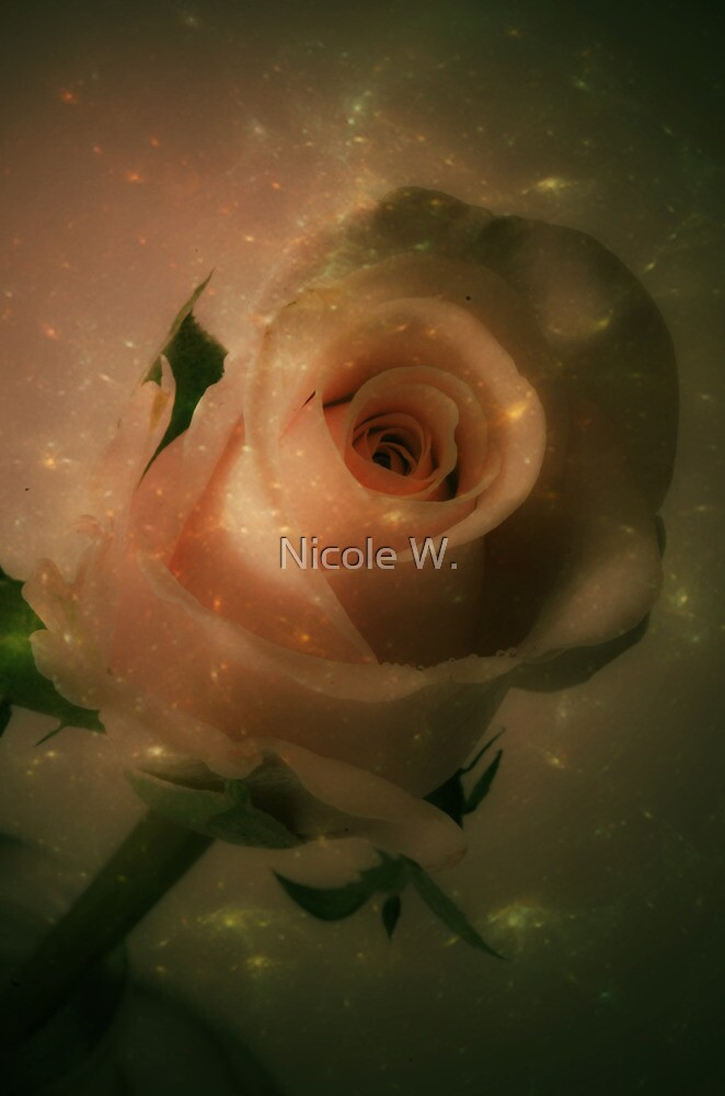rose by Nicole W.