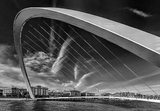 Newcastle Cityscape by Trevor Kersley