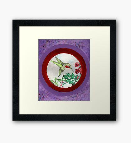 Humming Bird Circle Framed Print