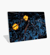 Lights in the Sky Laptop Skin