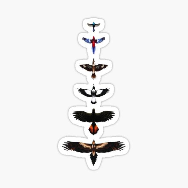Australian Birds - Illustrated Sticker