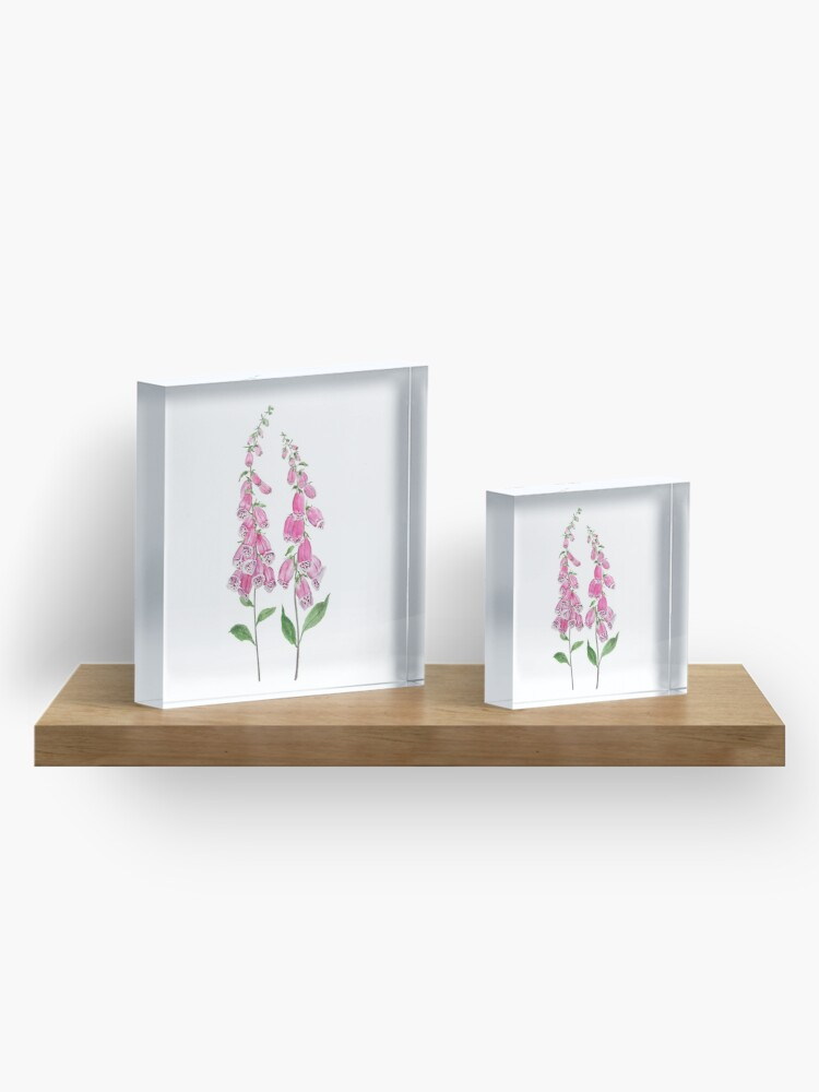 Alternate view of 2 pink foxgloves flowers blossom  Acrylic Block