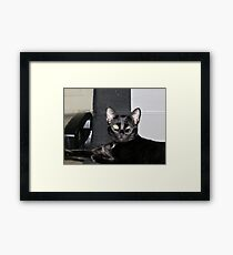 Cortana Winks at Me Framed Print