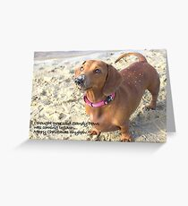 A very doxie Christmas 14 Greeting Card