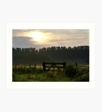 Morning light pastures  Art Print