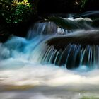 Waterfall by Angelika  Vogel