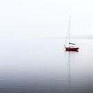A Still Morning on the Huon River, Tasmania by Jim Lovell