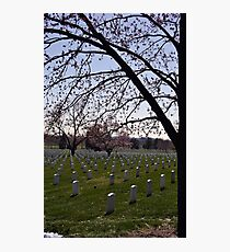 Arlington Photographic Print
