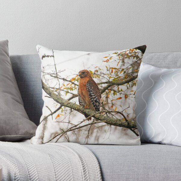 Hawk In Deep Thought Throw Pillow