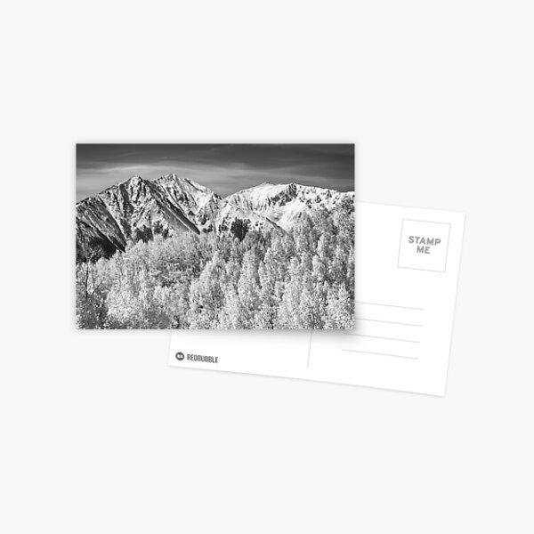 Colorado Rocky Mountain Autumn Magic Black and White Postcard