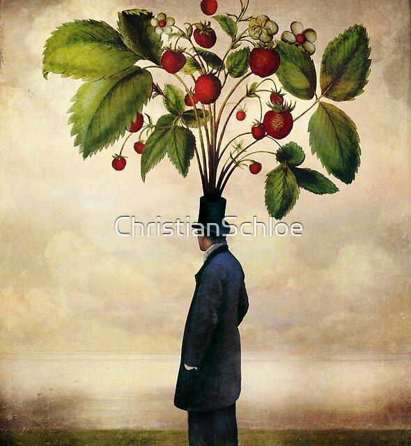 The Optimist by ChristianSchloe
