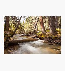 Banff National Park Photographic Print