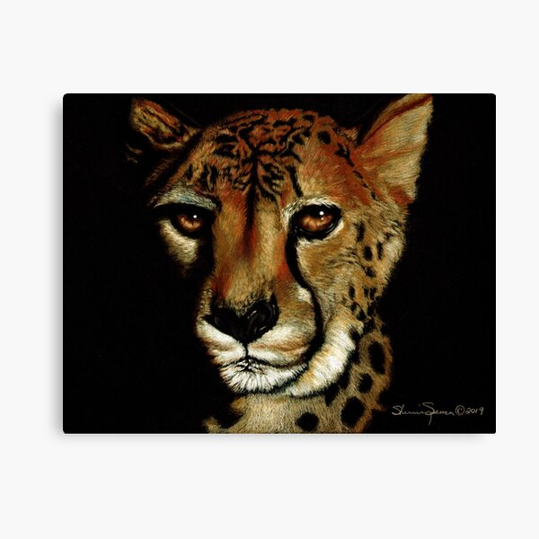 Cheetah Portrait on black paper Canvas Print