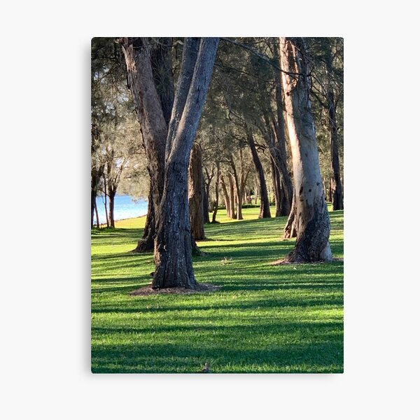 Trees by the Lake - Image to enhance Children, Creativity and Fun Canvas Print