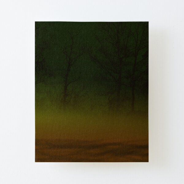 Misty Forest Canvas Mounted Print