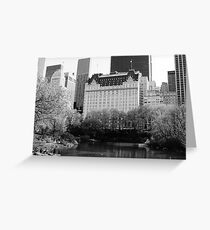 The Plaza Hotel, New York  Greeting Card