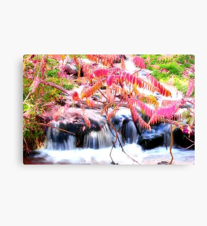Autumn Falls in Pink Canvas Print